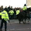 В Британии болельщиков травят собаками